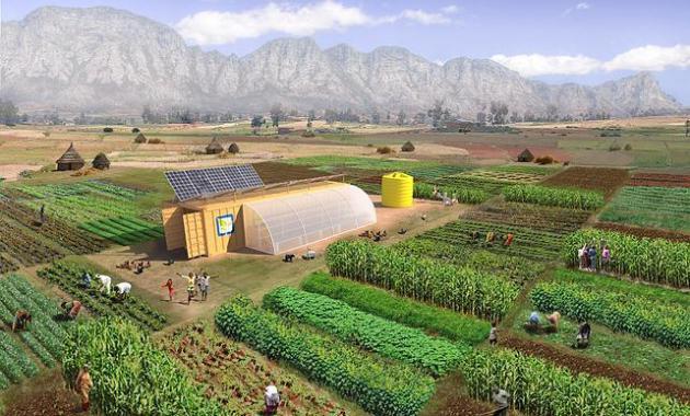 pertanian terpadu - agribisnis UMA