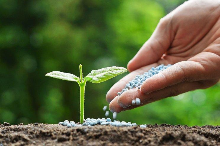 pupuk organik terbaik - magister agribisnis uma